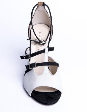 Sandalo maculato